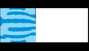 wise-logo2